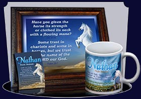 PC-AN26, Name Meaning Card, Wallet Sized, with Bible Verse Nathan white horse