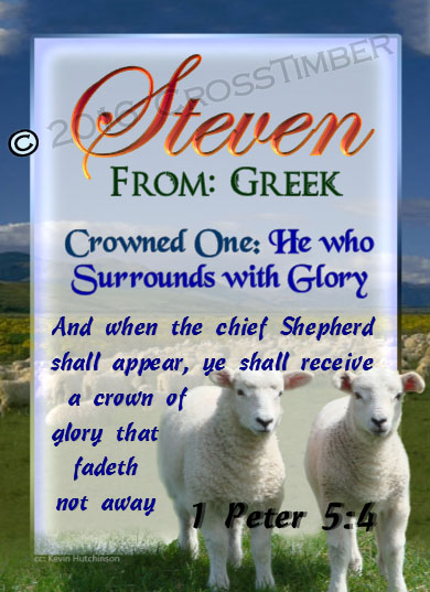 PC-AN03, Name Meaning Card, Wallet Sized, with Bible Verse two lambs sheep Steven