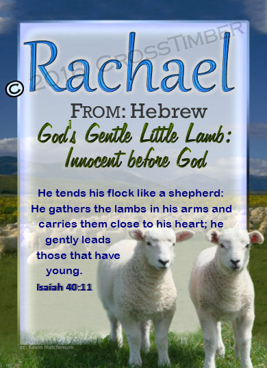 PC-AN04, Name Meaning Card, Wallet Sized, with Bible Verse Rachel Rachael sheep lambs flock shepherd