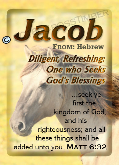 PC-AN48, Name Meaning Card, Wallet Sized, with Bible Verse jacob brown horse houses