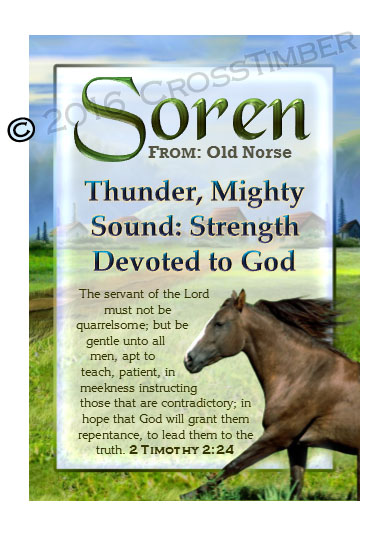 PC-AN49, Name Meaning Card, Wallet Sized, with Bible Verse soren brown horse house