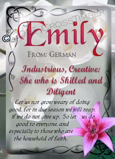 PC-FL09, Name Meaning Card, Wallet Sized, with Bible Verse, personalized, flower, emily pink lily
