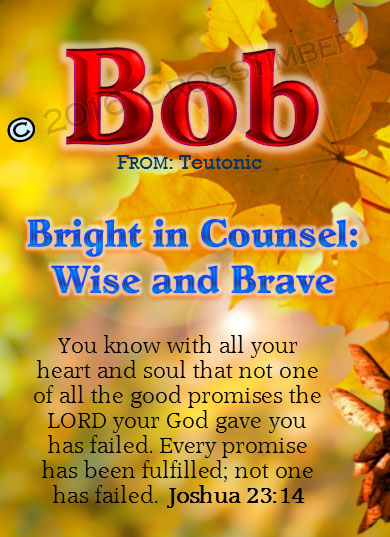 PC-LE09, Name Meaning Card, Wallet Sized, with Bible Verse, personalized, tree leaves leaf autumn fall bob robert