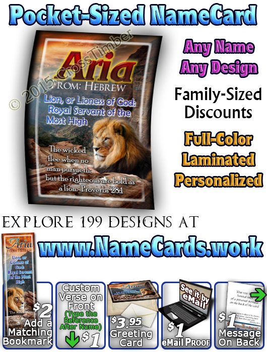 PC-AN09, Name Meaning Card, Wallet Sized, with Bible Verse, aria, lion, canyon, bravery, courage