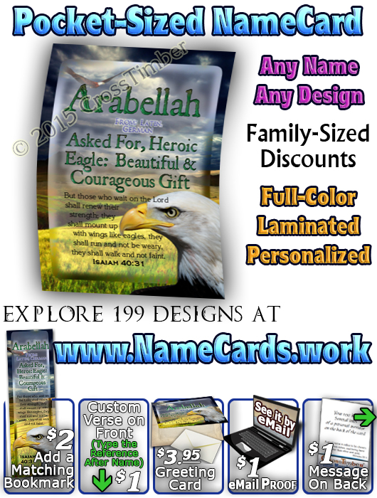 PC-AN23, Name Meaning Card, Wallet Sized, with Bible Verse bird arabellah bald eagle