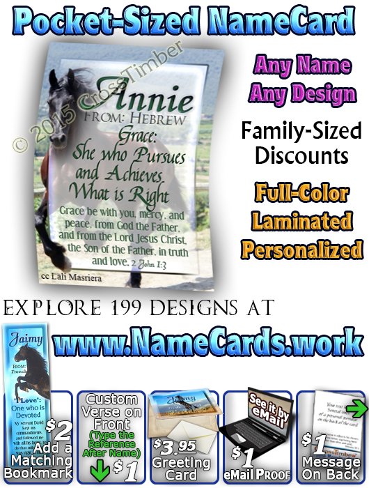 PC-AN29, Name Meaning Card, Wallet Sized, with Bible Verse Jaimy black horse beauty stallion