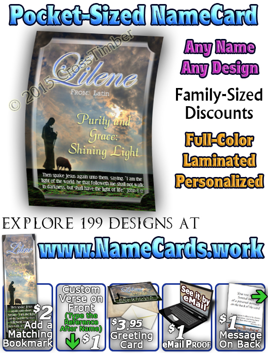 PC-AN34, Name Meaning Card, Wallet Sized, with Bible Verse memorial remembrance lileen shepherd sheep lamb