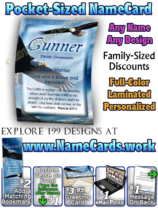 PC-AN38, Name Meaning Card, Wallet Sized, with Bible Verse gunner bald eagle bird