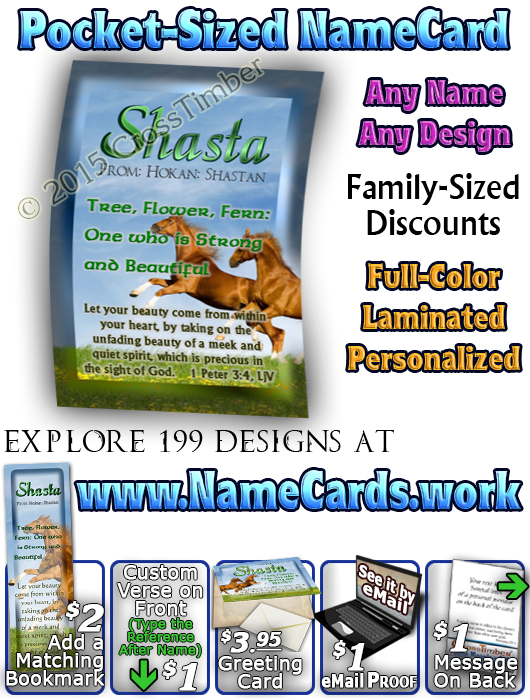 PC-AN42, Name Meaning Card, Wallet Sized, with Bible Verse Playful Horses happy joyful Shasta brown