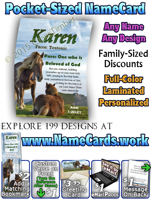 PC-AN44, Name Meaning Card, Wallet Sized, with Bible Verse karen horses mother mom child