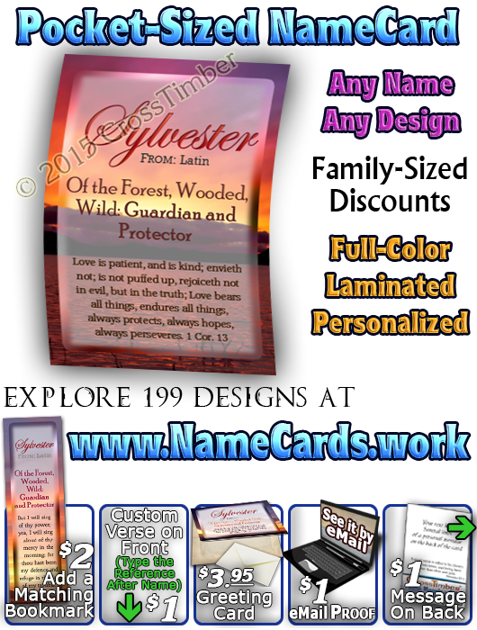 PC-SS03, Name Meaning Card, Wallet Sized, with Bible Verse, personalized, sunset, sylvester, simple