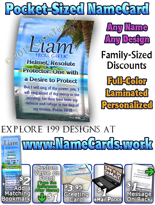 PC-WA06, Name Meaning Card, Wallet Sized, with Bible Verse, personalized, Liam ocean beach vacation palm trees sand