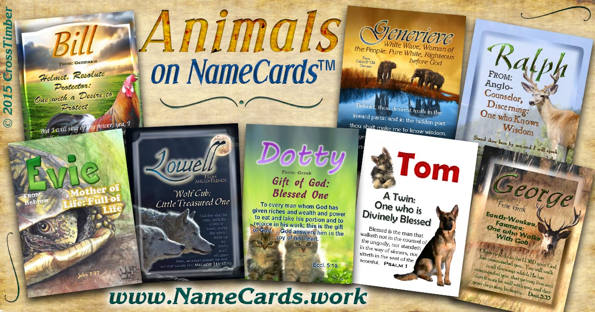 Name meaning cards with cute animals; kittens, elephants, dogs, turtles